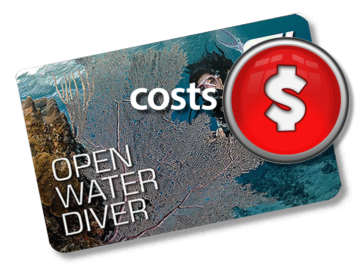 How much does it cost? - Harry\'s Dive Shop